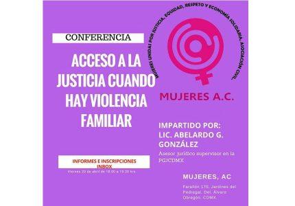 Conferencia Acceso a la Justicia cuando hay violencia familiar